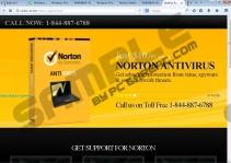 Norton-fix.net