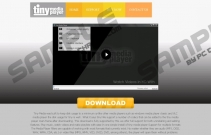 TinyMediaPlayer