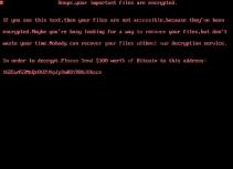 Uselessdisk Ransomware