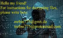 Scarab-Bin Ransomware